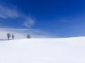 snow-in-hokkaido