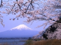 World Heritage Mt.Fuji